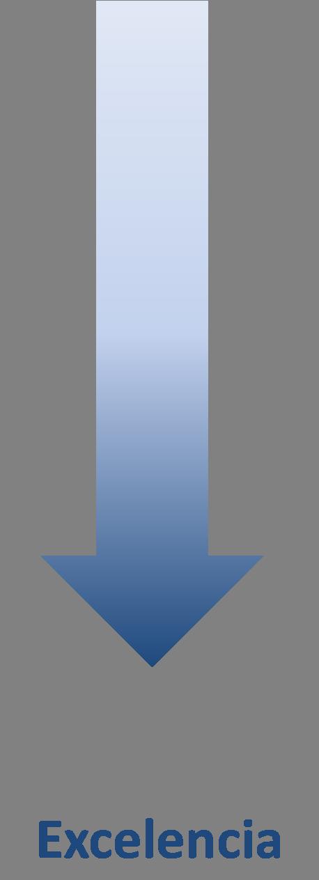 flecha excelencia norma